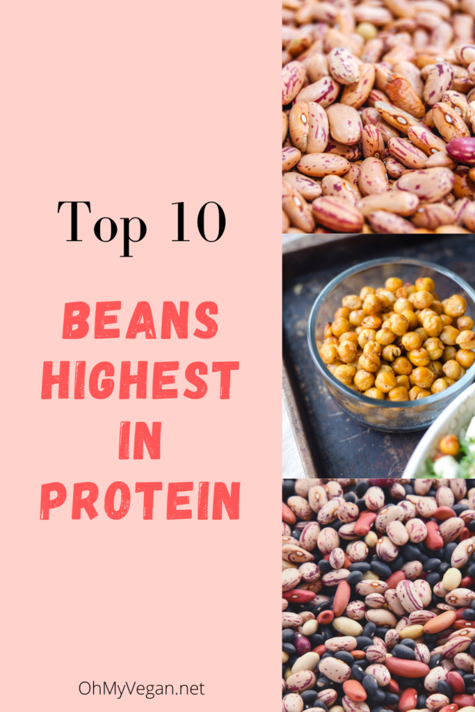 beans with the highest protein